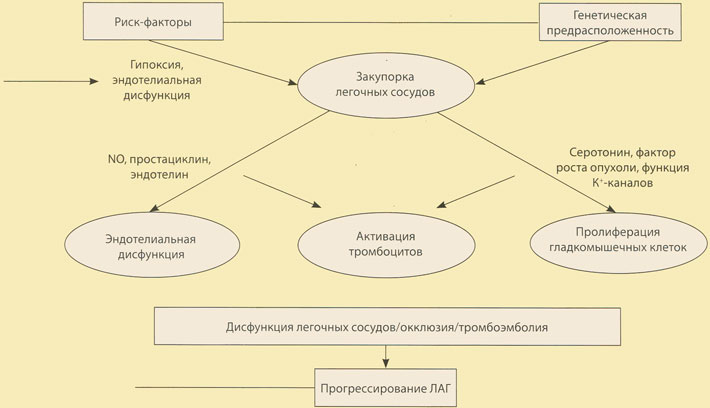 Неумывакин пути избавления от болезней гипертония диабет fb2