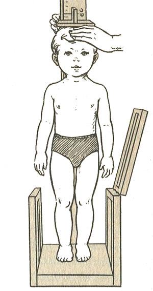 Измерение роста ребенка возрастом старше 2-х лет (вертикальный ростомер)