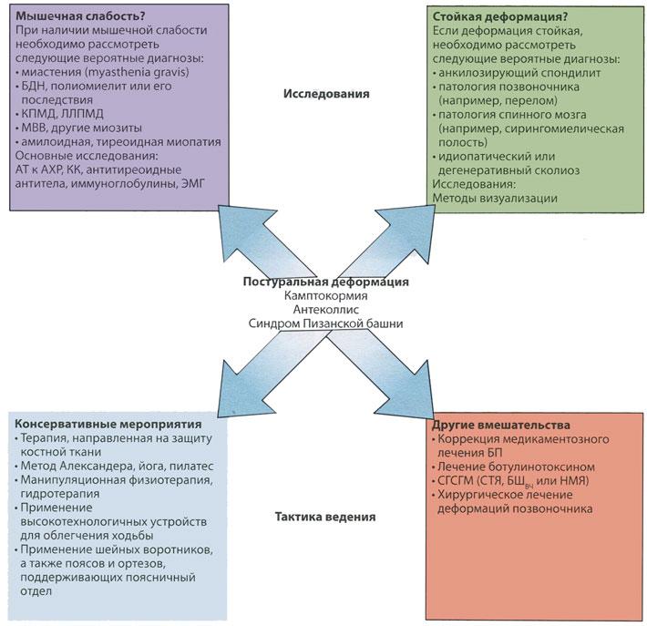 Дифференциальная диагностика, исследования и варианты лечения постуральных деформаций при болезни Паркинсона