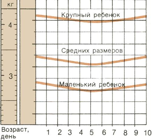 Кривые веса и окружности головы ребенка
