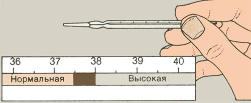 Измерение температуры тела у младенца
