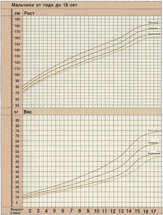 Соотношение роста и массы тела у ребенка