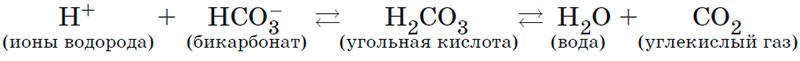 Бикарбонатный буфер