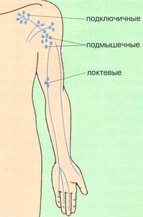 Лимфоузлы верхних конечностей