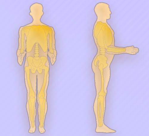 Оценка подвижности суставов