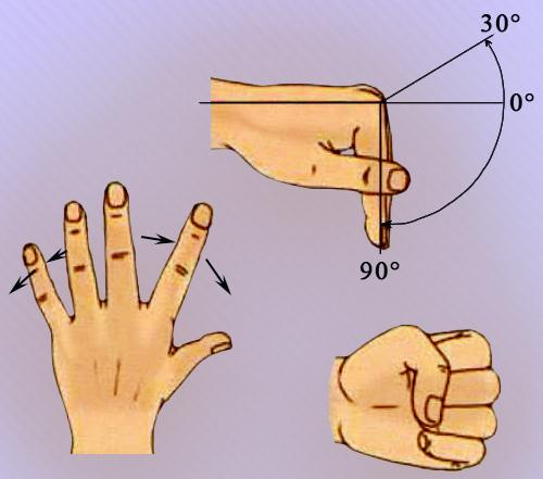 Движение пальцев кисти