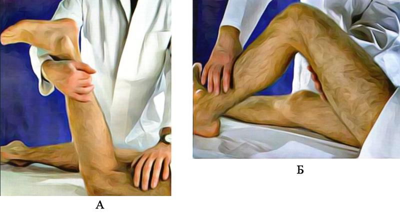 Движения коленного сустава