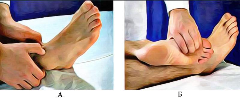 Пальпация голеностопного сустава и суставов стопы