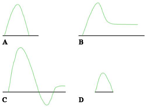 Спектральная допплерограмма на разных стадиях эрекции
